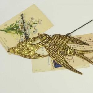 swallow (3)